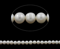 Cultured Round Freshwater Pearl Beads Natural White Grade AA 11 12mm Hole Approx 0 8mm Sold
