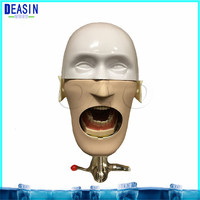 Dental Simple Head model Apply to the oral cavity simulation training fixed on the dental chair for any position practice
