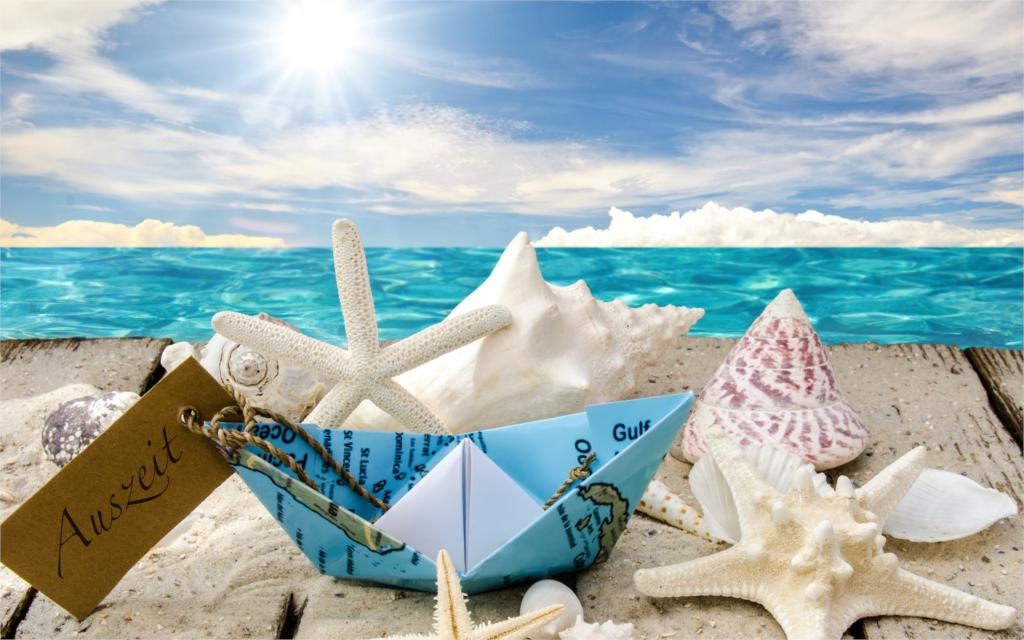 seashells starfishes beach sea sunshine shells stars beach sea sun 4 Sizes Wall Decor Canvas  Poster Print