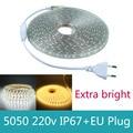 Led Strip 5050 220V AC With Power plug 60 Led / M IP67 Waterproof outdoor Home decoration string lighting led flexibe tape light