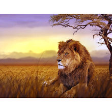 Full square diamond 5D diamond embroidery Lion under the sunset diamond painting cross stitch rhinestone mosaic decoration YY(China)