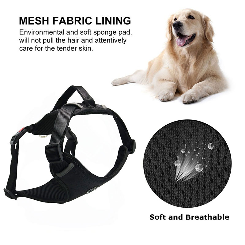 Harness-for-dogs