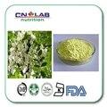 95% rutina bioflavonoides suplemento de hierbas
