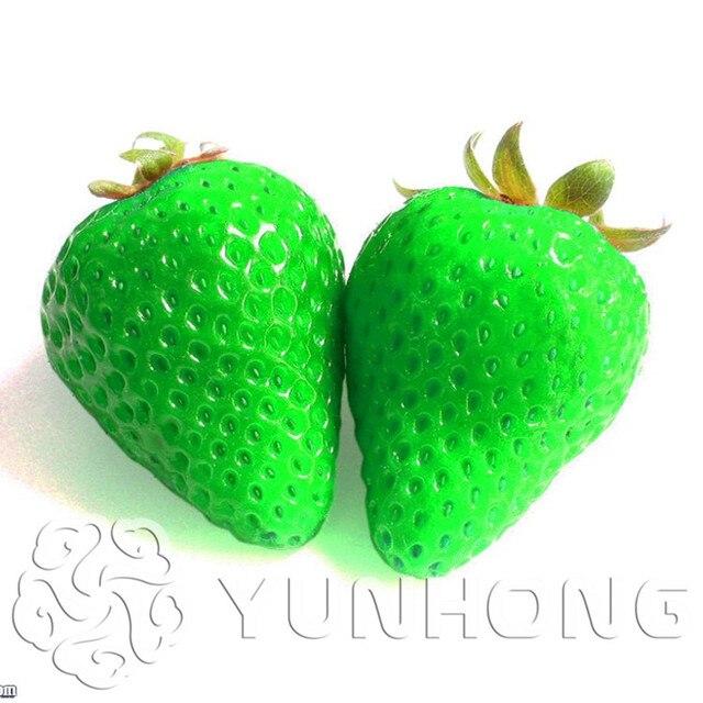 500 قطع نادر الأخضر الفراولة العصير الفاكهة بونساي النباتات للمنزل و حديقة سوبر كبيرة الفاكهة مصنع الفراولة بونساي