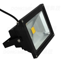 Led Flood Light 20W Cold Warm White RGB IP65 Outdoor Floodlight Black Cover Led Reflector Spotlight
