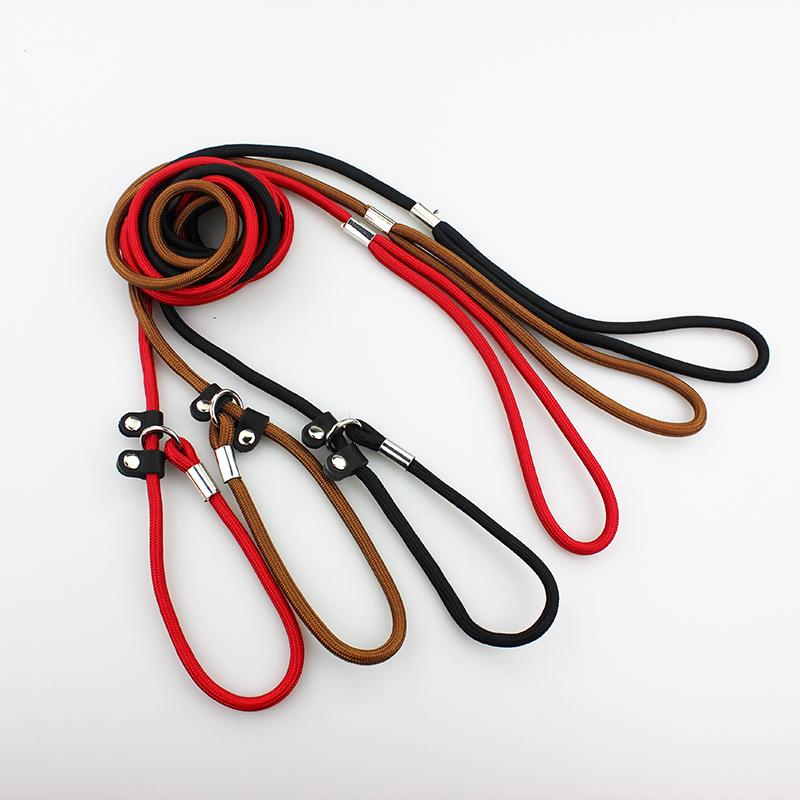 dog leash 5