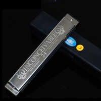 Populaire cygne 24 trou Tremolo Harmonica C clé polyphonie Harmonicon noir Octave accordé bouche orgue Harmonica avec étui