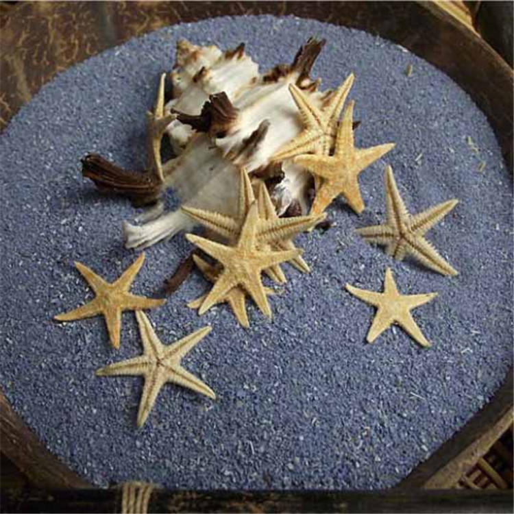 10pcs/lot 1-2cm Natural Sea Star Wishing Bottle Starfish DIY Art Seashell Home Decoration Wall Stickers Decor Adornment Material