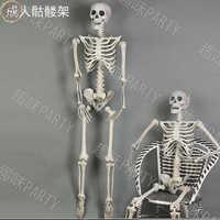 Festivali Perili ev Sahne Cadılar Bayramı Sahne Terörist 170 cm İskelet Plastik Kafatası Kemik Çantası Vücut Odası Dekorasyon