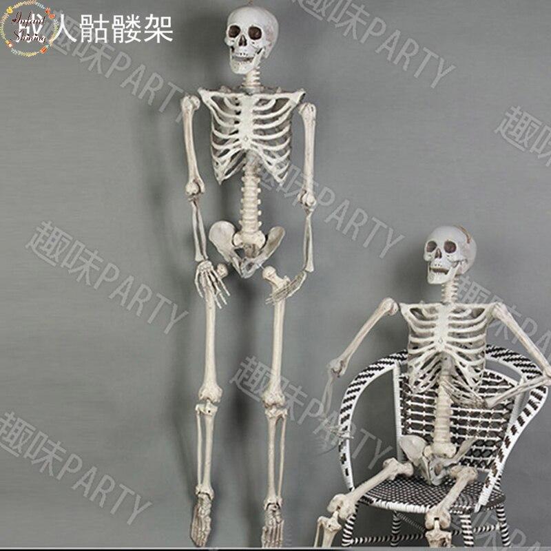 Festivel casa assombrada cenário halloween adereços terrorista 170cm esqueleto de plástico crânio osso saco corpo câmara decoração