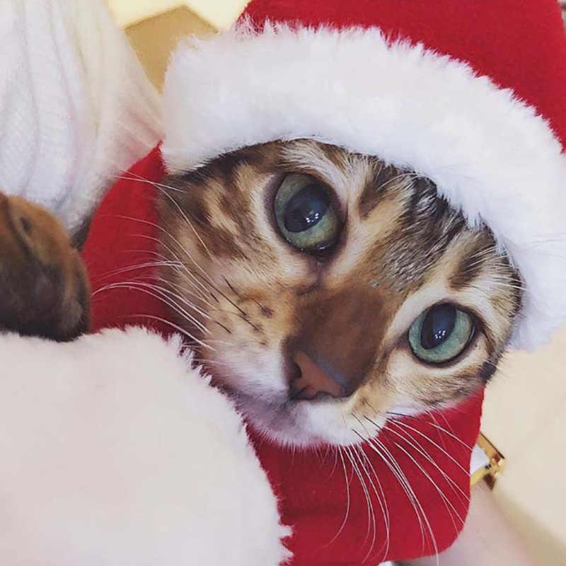 Inverno quente natal animal de estimação gato cão papai noel chapéu natal natal natal ano novo boné de pelúcia festa de natal decorações para casa suprimentos