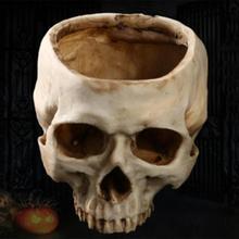 Resin Crafts Human Tooth Skull Fossil Teaching Skeleton Model Halloween Home Office Flower Pot Planter Skull Pot Decoration