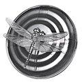 Venda quente E Mais Novo Projeto Da Novidade Levou Luz Caminho Movido A Energia Solar Mudando de Cor LEVOU Luzes Dragonfly Flutuante Para Ao Ar Livre