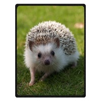 Soft hedgehog Print Sofa Bed Travel Warm Blanket Summer Air Conditioning Throw Blankets For Baby Kids