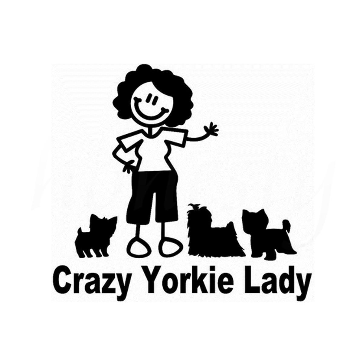 Pemodelan Karakter Kartun Gila Lady Sepeda Motor Laptop