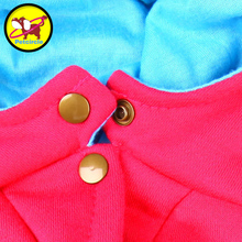 Adorable, fashionable winter USA sport Chihuahua sweatshirt + pants / 10 designs
