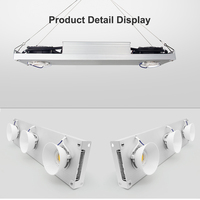Dimmable COB LED Grow Light Full Spectrum led grow light full spectrum Vero29 Citizen LED Growing Lamp Indoor Plant Growth