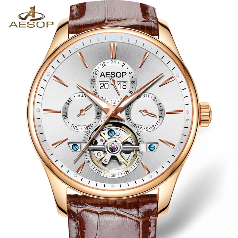 Aesop Brand Watch Men Automatic Mechanical Watch Sapphire Glass Leather Strap Date Week Relogio Masculino casima brand week date mechanical watch men sapphire crystal business automatic wrist watch waterproof clock relogio masculino