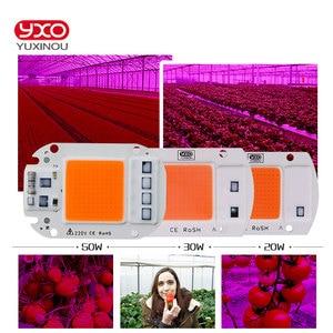 Image 5 - Chip de luz Led para cultivo hidropónico, espectro completo de 380nm ~ 780nm, para invernadero, bricolaje, 20W, 30W, 50W, 230V, 1 Uds.