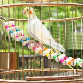 AHUAPET Parrot Toys Hammock With Stand Cage Platform Bird Cage Pappagallo Wood Stainless Steel Totoro Ladder Pigeon Supplies E