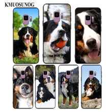 For Samsung Galaxy Note 9 8 S9 S8 Plus S7 S6 Edge S5 Mini Black Silicone Phone Case Animal Bernese Mountain Dog Style
