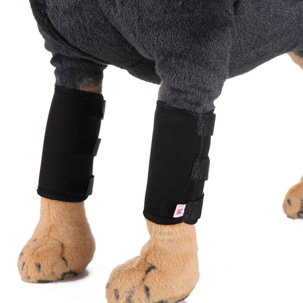 Pet Dog Knee Hock Brace Prevents Injuries Front Leg Brace Paw Compression Wraps With Protect Dog Accessories
