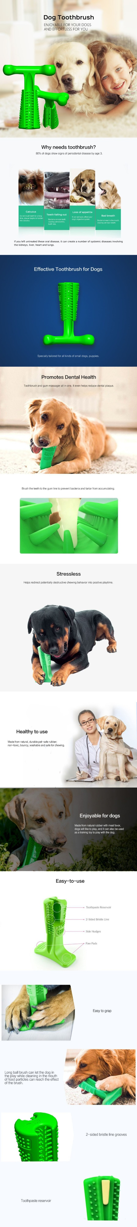World's Most Effective Doggies Toothbrush