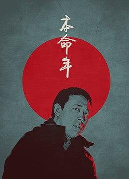 《本命年》1990年中国大陆剧情,爱情电影在线观看