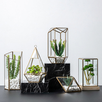 Vintage Glass Geometric Box Irregular Plant Planter Flower Terrarium Box Tabletop Moss Fern Pot Micro Landscape Garden Decor