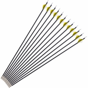 Image 3 - 40 lbs Archery Recurve Bow Outdoor Shooting Hunting Bow With Accessories 12 pcs Archery Arrows Blind  Tree Stand
