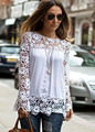 2016 Remarkable 1PC Women Sheer Sleeve Embroidery Lace Crochet Tee Chiffon Shirt Blouse Cool