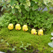 5pcs/bag birdie microlandscape Decorating kids birthday party gifts little yellow Lovely bird DIY bonsai