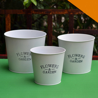 White Iron Bucket Garden Flower Pots Placed in Creative Home Decoration Window Flower Shop Bucket