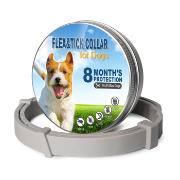 Anti Insect Dog Collar