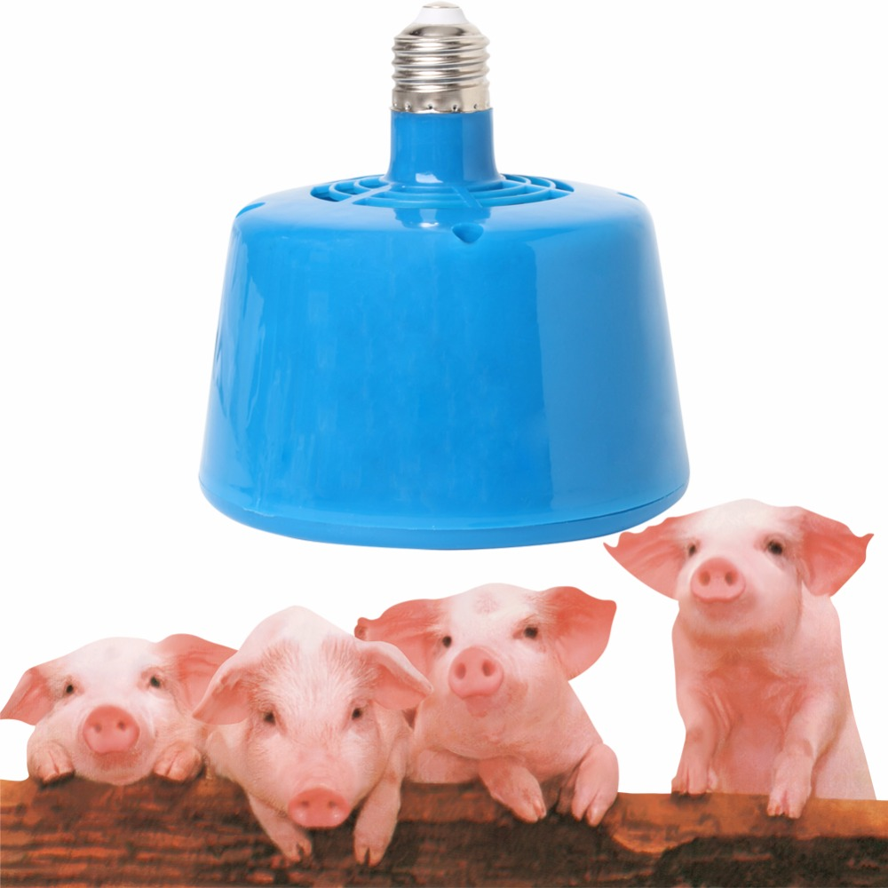 2017 Pets Livestock Piglets Chickens Heat Warm Lamps