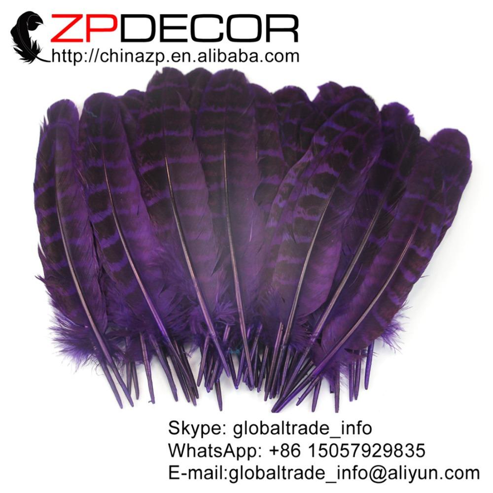 purple ringneck hen feathers