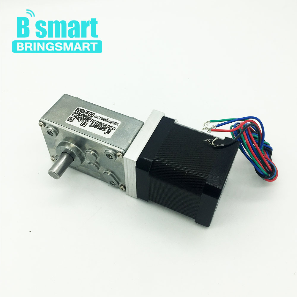 Bringsmart A58SW-42BY Worm Gear Motor Stepper DC Stepping Geared Motors 24V DC Motor 12V Self-locking Mini Reducer Gearbox dinstry infant clothing spring children s clothing 0 1 2 3 year old baby clothes spring and autumn t shirt romper 2pieces sets