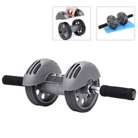 Heavy Duty Dual Wheels Ab Roller Fitness Equipment Abdominal Carver Abs Trainer Outdoor Indoor Workout Equipment with Mat