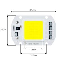 6pcs/lot COB LED Lamp Chip 50W 30W 20W 220V & 110V Cold Warm White Input Smart IC Driver Fit For DIY LED Floodlight Spotlight