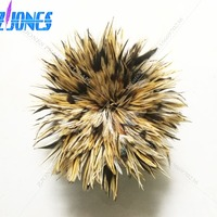 Wholesale 850pcs/bundle Beautiful Rooster feathers 4 6/10 15cm Chicken Feather Strung Pheasant Feather For Dress Decoration