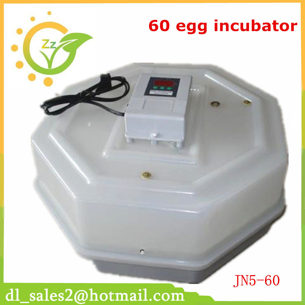 Best price high quality mini incubator for 60 chicken eggs CE approved high quality holding 60 chicken eggs manual jn2 60 mini egg incubator high hatching rate