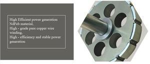 Image 5 - Small Three Phase 400W Permanent Magnet Generator 12V 24V 48V Alternator PMG With DC Controller