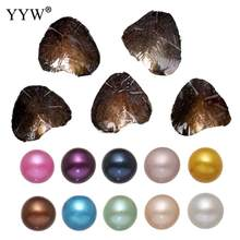10PCs/Lot akoya pearl oysters single bowling individually packaged Birthday Wedding Gift Vacuum pack Oyster pearl Dyed Beads(China)