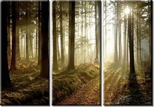 3 Piece Canvas Print Painting Forest Sunset Sunlight Autumn Wall Art Home Decoration Living Room