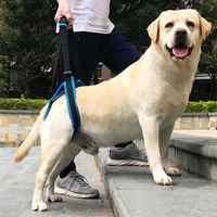 Best Gift Pet Dog Auxiliary Belt Harness Assist Lift Support Rehabilitation Belt for Elder Sick Dog FP8
