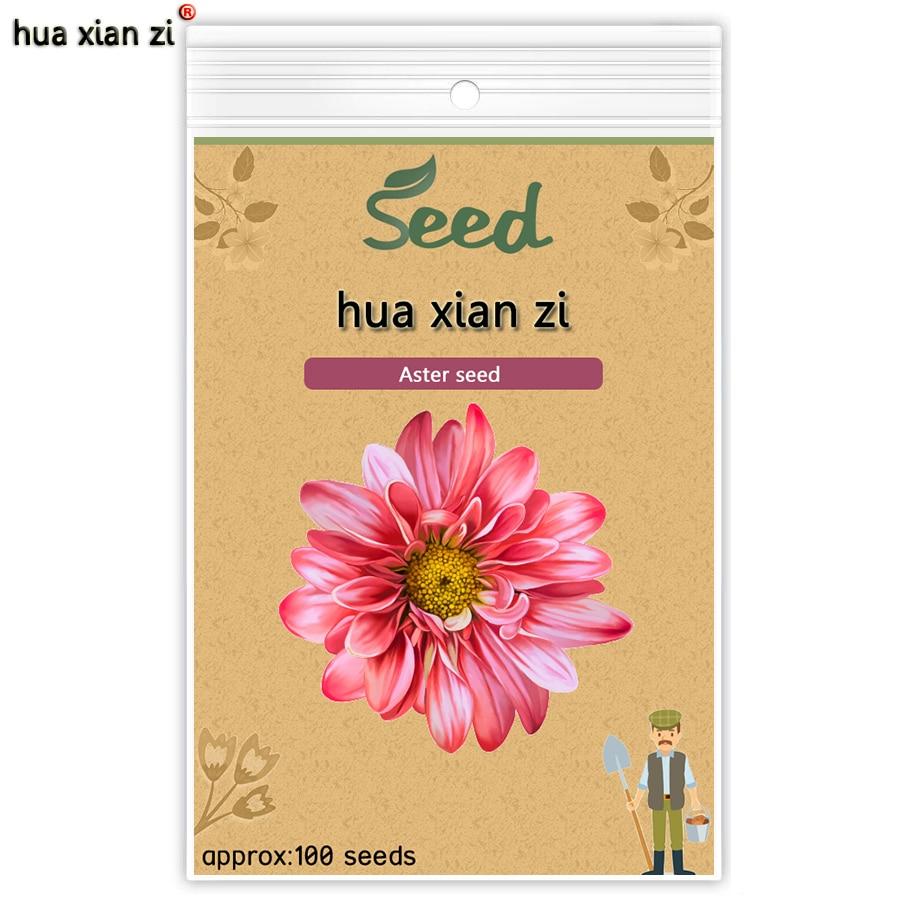 ХУА СЯНЬ ЦЗЫ Китай Цветок Астры Семена, Callistephus Chinensis Семена Сильная Способность К Воспроизводству для Дома Сад Растений 100 семена/мешок