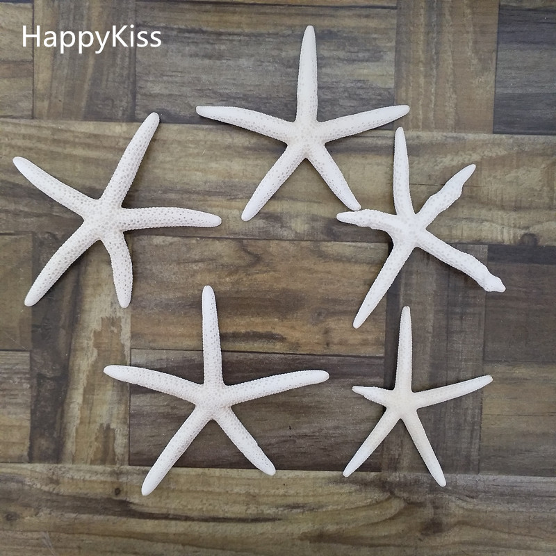 5pcs/lot Shell Coral Medium Crafts 6-10cm Decoration Natural Starfish Beige White Sea Star Wedding Party Sea Star