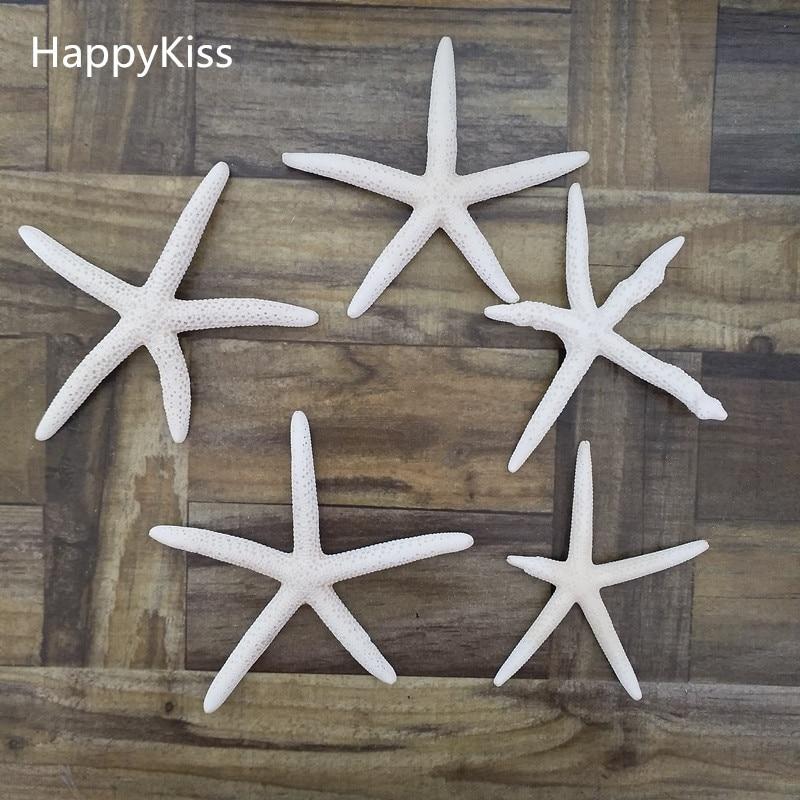 5pcs/lot Shell Coral Medium Crafts 6-10cm Decoration Natural Starfish Beige White Sea Star Wedding Party Sea Star