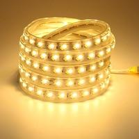 Tira LED 220V Flexible Strip Light Ruban 5m 10m 15m 20m 25m 30m 35m 40m 45m