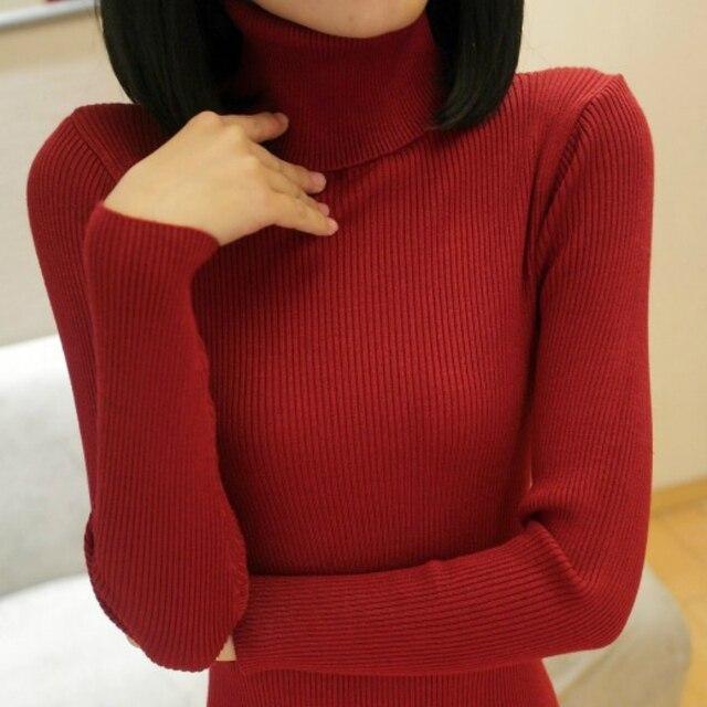 Turtleneck Sweater women